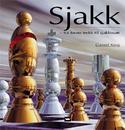 Sjakk - fra første trekk til sjakkmatt, Damm